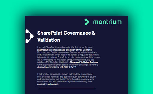 SharePoint Governance & Validation Information Sheet
